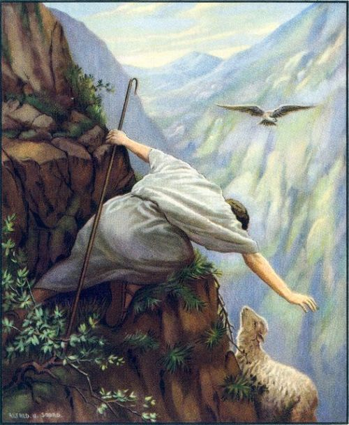 The Good Shepherd would give His life for one lost sheep.