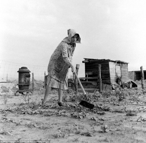 Real hardship:  surviving the Dust Bowl years in America.